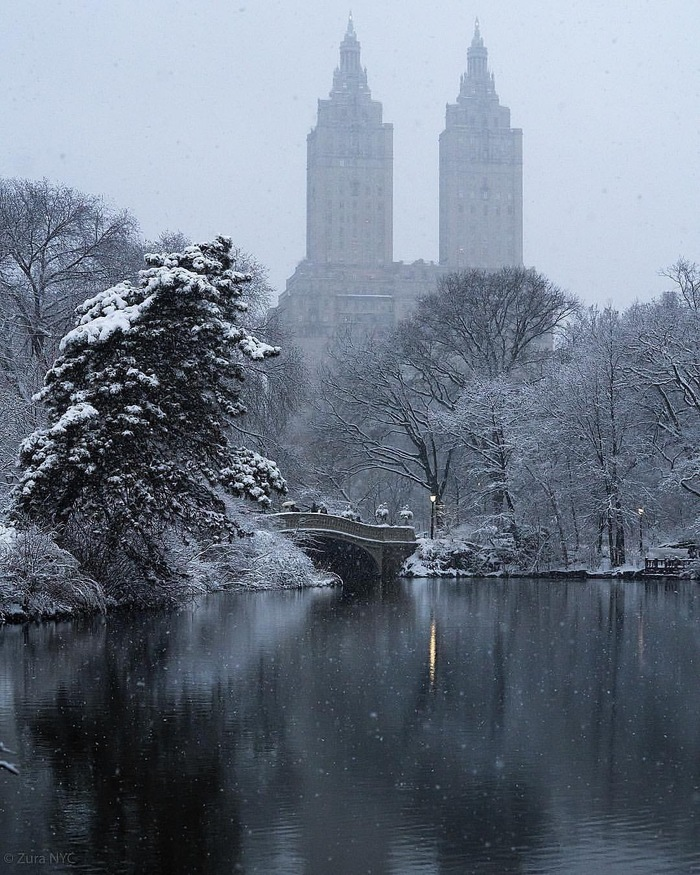 Central Park (NYC) Нью-Йорк, Центральный парк, Длиннопост