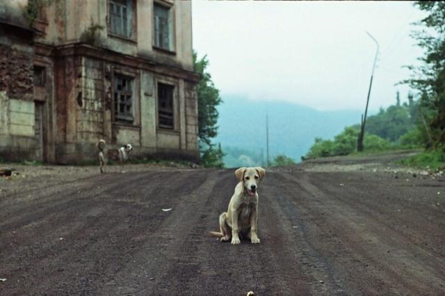 Абхазия — край природы и разрушений (Часть 1) Абхазия, Разрушение, Природа, Длиннопост