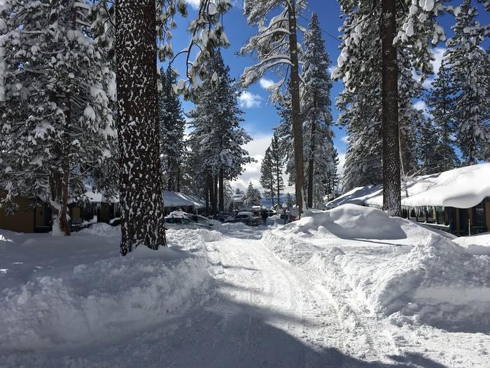 Зима в Калифорнии Калифорния, Зима, Снег, Тахо, Длиннопост, Природа, Фотография