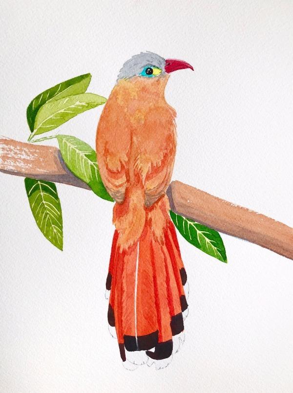 Акварельные птицы Акварель, Рисунок, Птицы, Снегири, Длиннопост, Анималистика, Ветка