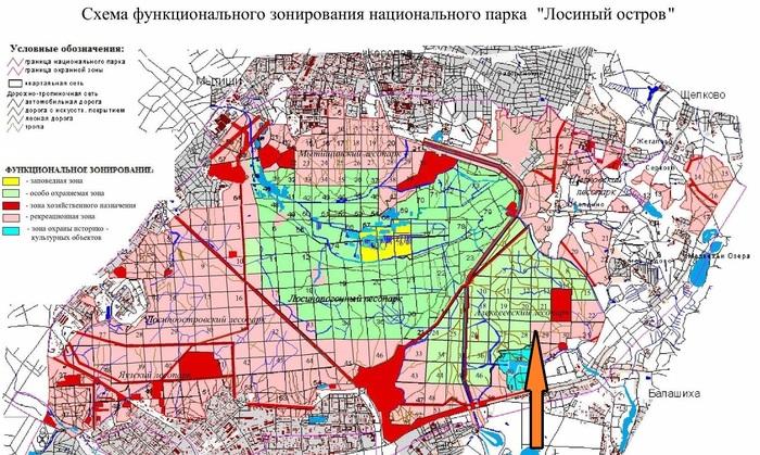Как восстанавливали лес в 20 км от Кремля? Длиннопост, Лесной форум Гринпис, Москва, Лосиный остров