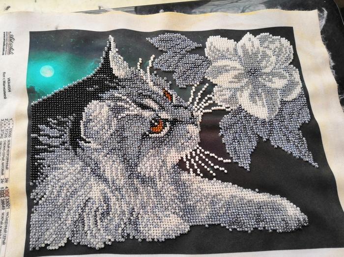 Кот с магнолией Вышивка, Вышивка бисером, Рукоделие, Рукоделие с процессом, Рукодельники, Длиннопост
