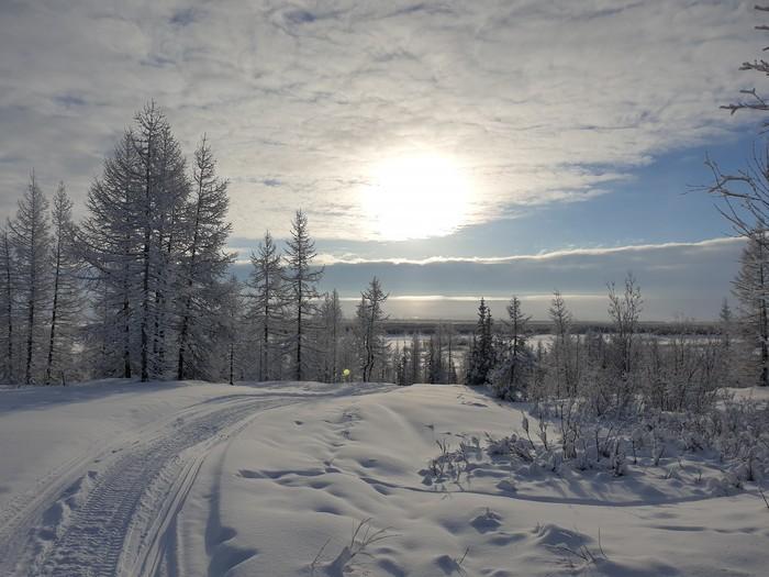 Воскресный день Ямал, Лабытнанги, Мороз, Длиннопост