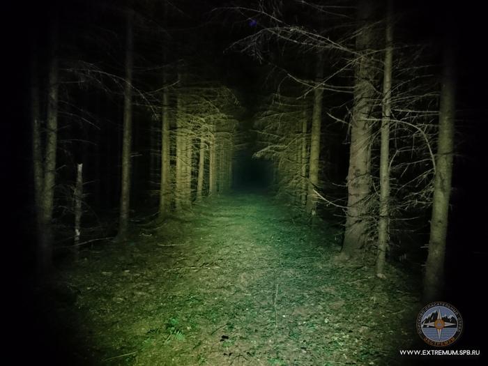 Поиски людей в лесу. Введение. Зачем все это нужно? Профессиональные банальности Псо Экстремум, Поиск людей, Поиск, Спасатель, Длиннопост, Длиннотекст