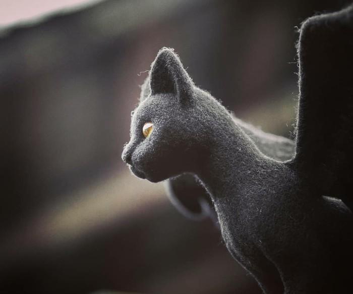Крылатый кот Рукоделие без процесса, Длиннопост, Кот, Сухое валяние