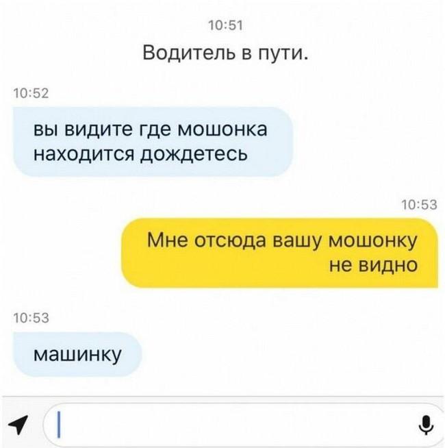 Яндекс.мошонка