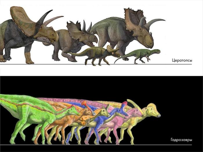 Палеонтологические твари и где они обитают: мифы о вездесущих динозаврах. Часть 3 Палеонтология, Динозавры, Павел Скучас, Антропогенез ру, Ученые против мифов, Длиннопост