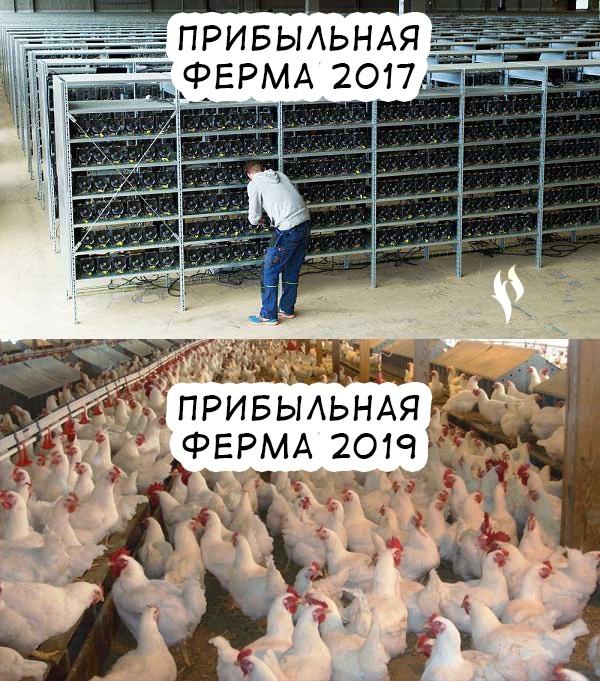Яйца сейчас выгоднее майнинга)