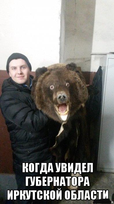 Медведь и губернатор Медведь, Губернатор, Охота, Охотник, Картинка с текстом
