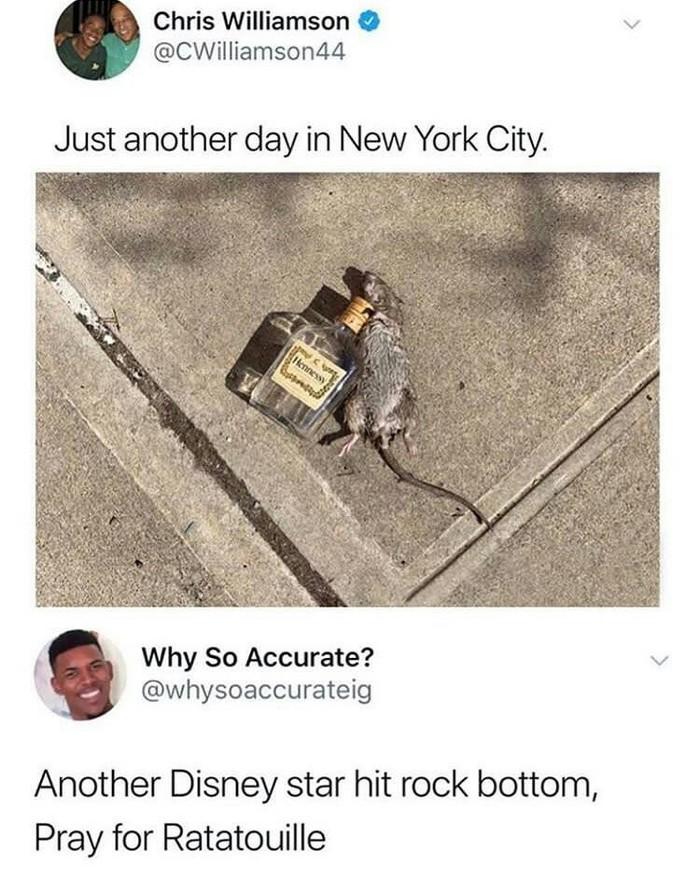 Рататуй в Нью-Йорке Twitter, Рататуй, Нью-Йорк, Hennessy, Крыса, Бутылка