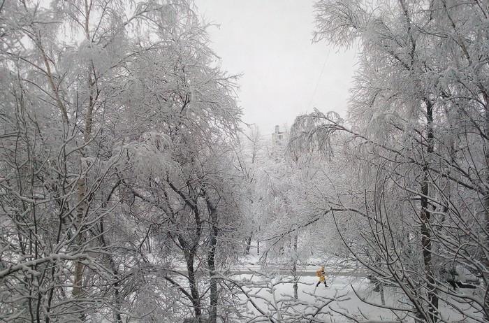 Зима'19