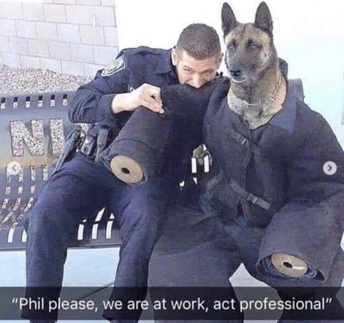 Фил, пожалуйста, мы на работе, веди себя профессионально!