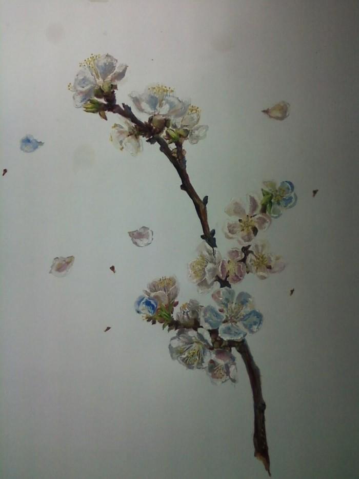 Котаны, есть огромная к вам просьба :3 Весна, Рисунок, Длиннопост, Гуашь, Простой карандаш, Снежный шар, Ветка, Цветы