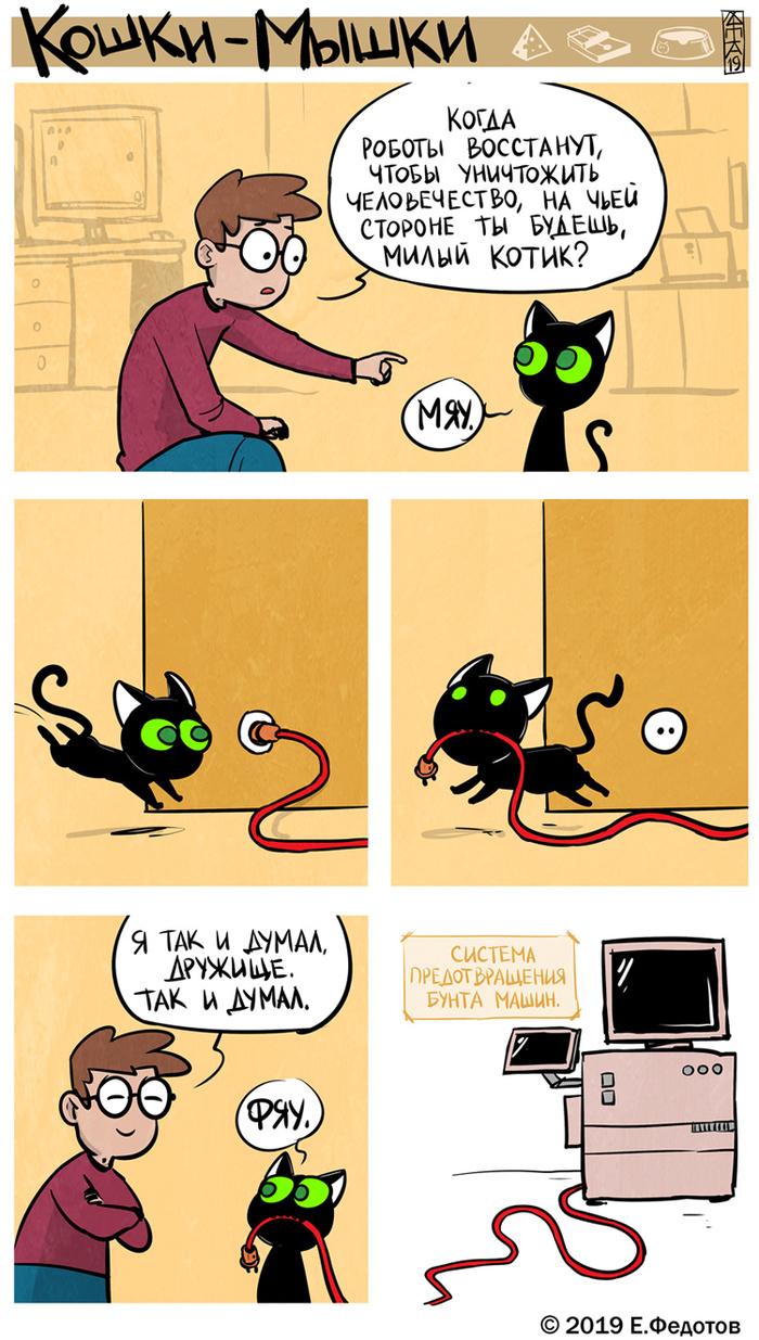 На чьей ты стороне, милый котик?