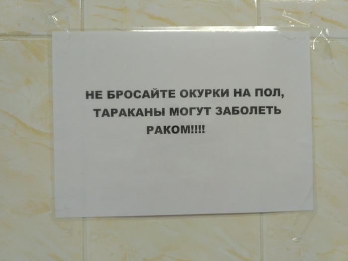Общажная поэзия Тараканы, Окурки