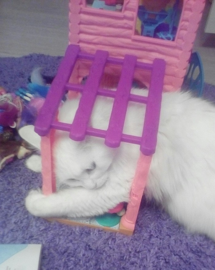 Алиса в стране чудес Кот, Кукольный дом, Длиннопост, Домашние животные