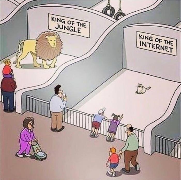 Царь зверей и царь интернета