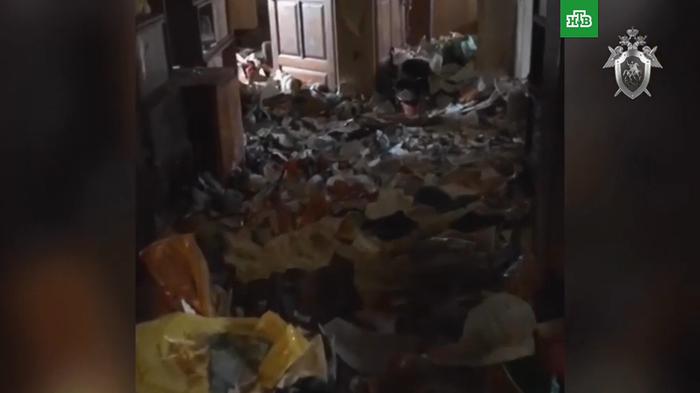 Девочка-маугли найдена в квартире-помойке Адвокат, Юриспруденция, Семья, Родители, Воспитание, Жесть, Плохие родители, Видео