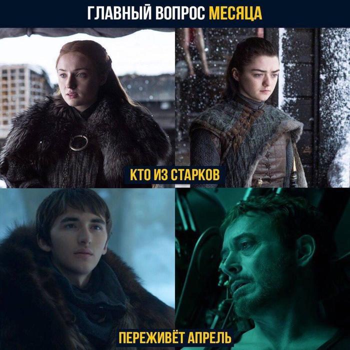 Ставлю на Тони Игра престолов, Железный человек, Санса Старк, Арья Старк, Бран Старк, Тони Старк