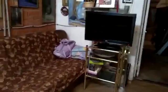 Жители Долгопрудного выселили из подвала 50 нелегалов Нелегалы, Подмосковье, Московская область, Управляющая компания, Жители