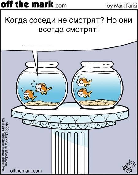 Стеснительная рыбка