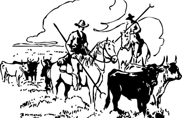 5 секретов фермеров штата Небраска Корова, Ферма, Фермер, Откорм бычков, Говядина, Скот, Пасти, Видео, Длиннопост