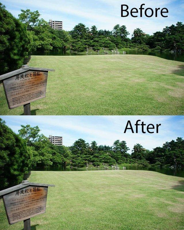 Челлендж по уборке мусора в японском парке . До и после .