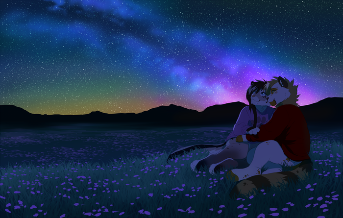 Romantic night Фурри, Furry Art, Furry Feline, Ночь, Звёзды, Поле, Пара, Akitamonster