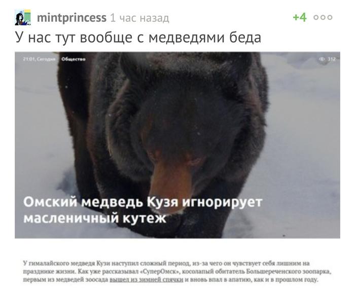 Да что ж такое-то с медведями? Комментарии на Пикабу, Скриншот, Медведь, Омск