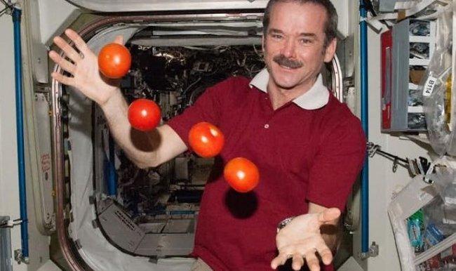 Гравитация влияет на то, как мы принимаем решения Гравитация, Адаптация, Космос, Royal Holloway, Эксперимент