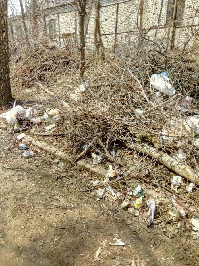 Как я мусор убирала Мусор, Уборка, Длиннопост