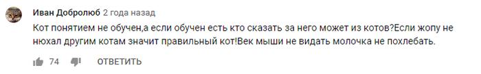 Минутка АУЕ Скриншот, Комментарии, Стеб, Баян, Длиннопост