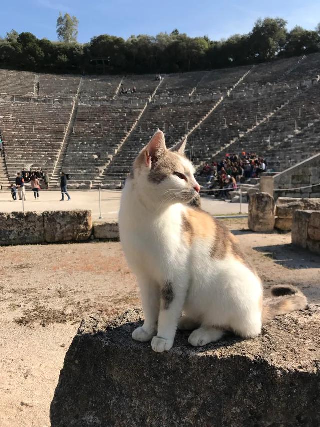 Хранитель древнего театра