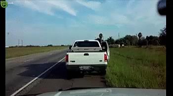Немедленно остановитесь и выйдите из машины