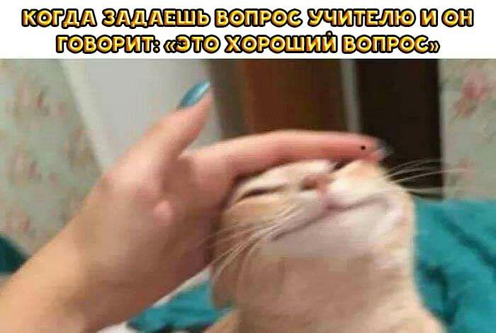 Похвала)