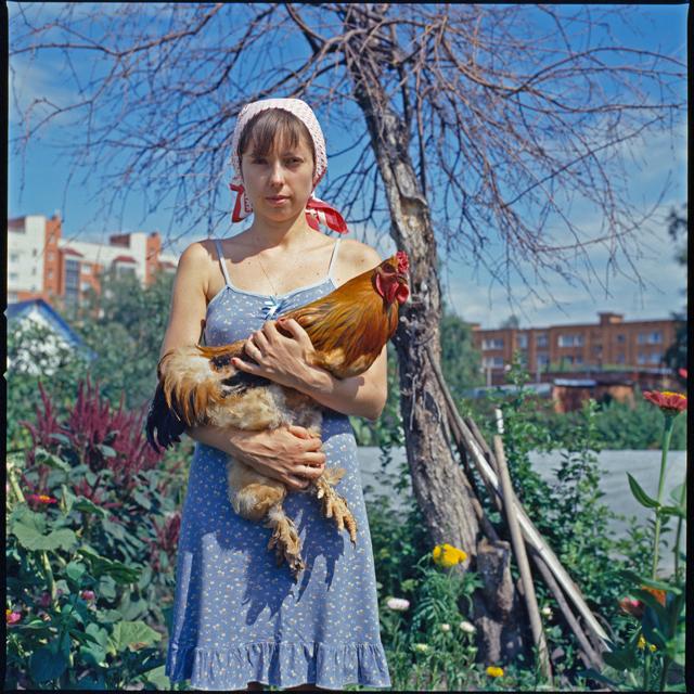 Анна с петухом Hasselblad, Фотография, Красивая девушка, Девушки, Петух, Домашние животные