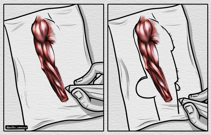 Когда изучаешь анатомию очень выборочно Darilic_comics, Комиксы, Рисование, Анатомия, Изучение, Боль художника, Художник, Рисунок