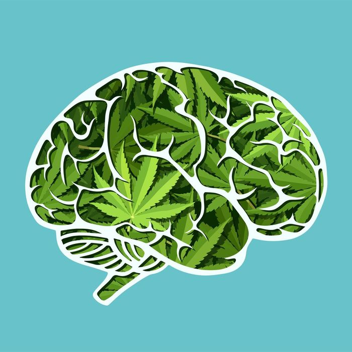 Почему отказаться от курения травы может быть так трудно Перевод, Медицина, Марихуана, Трава, Психология, Длиннопост