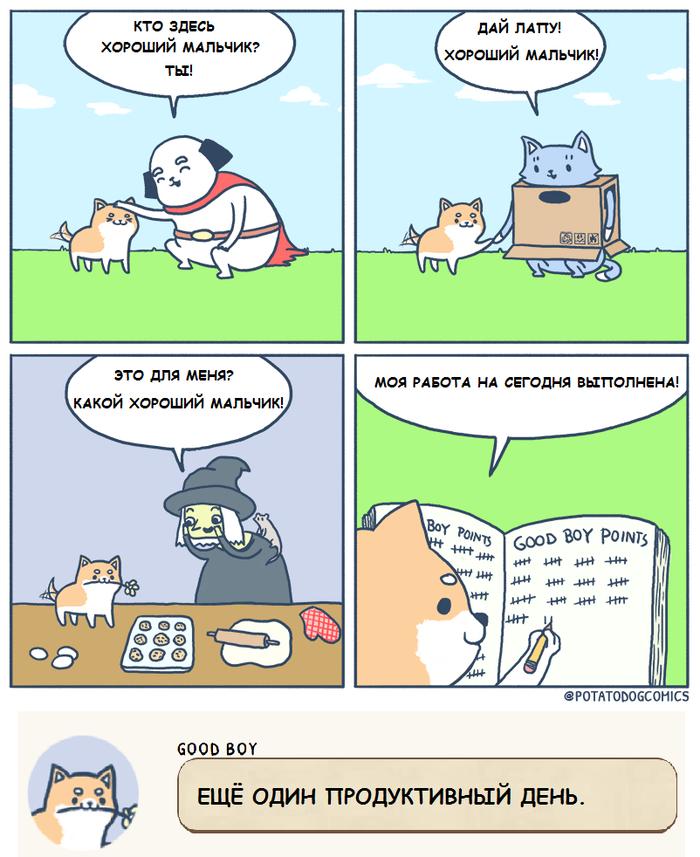 Продуктивный день. Potatodogcomics, Potato Dog and Cardboard Cat, Хороший мальчик, Собака, Кот, Комиксы