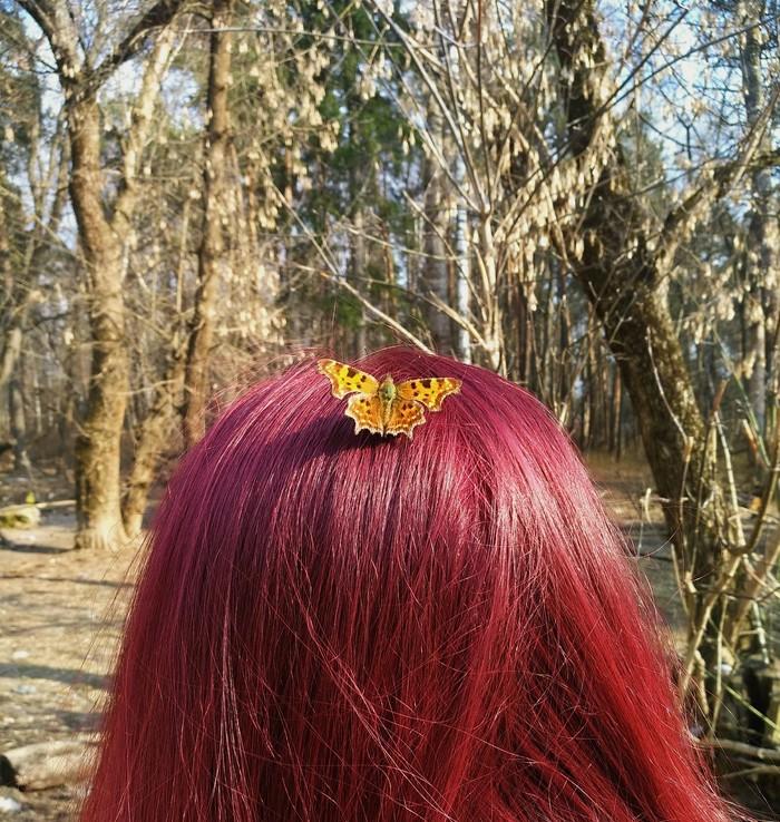 Спонтанные фотографии - самые лучшие! Милота, Бабочка, Цветные волосы, Природа, Природа и человек, Фотография