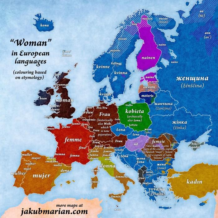 """Почему """"women"""" читается как """"wimen"""" Лингвистика, Этимология, Языкознание, Английский язык, Длиннопост"""