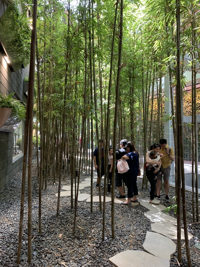 Жемчужина Чанги: новый мега-молл в Сингапуре Сингапур, Чанги, Аэропорт, Длиннопост, Архитектура, Дизайн, Путешествия в