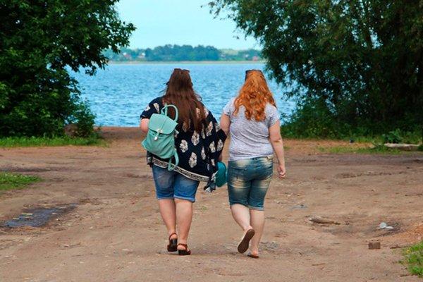 Роспотребнадзор: россияне толстеют Новости, Россия, Роспотребнадзор, Ожирение