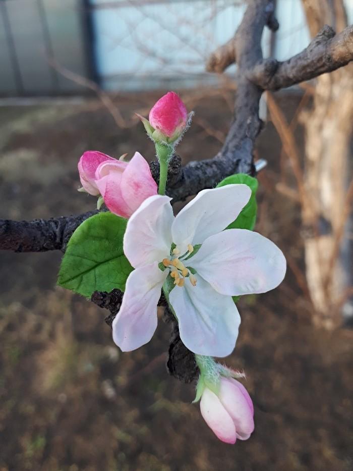 Брошка с цветком яблони. Ручная работа, Яблоня, Рукоделие без процесса, Цветы, Брошь, Видео, Весна, Длиннопост
