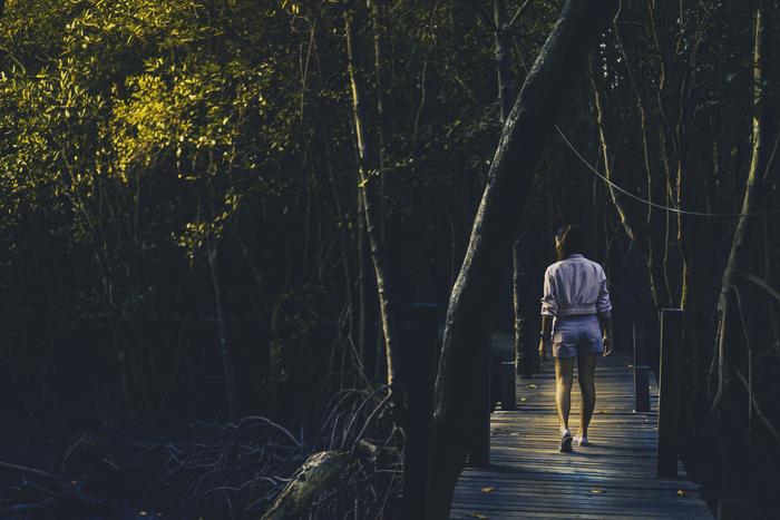 Прогулка в лесу Лес, Жена, Таиланд, Фотография