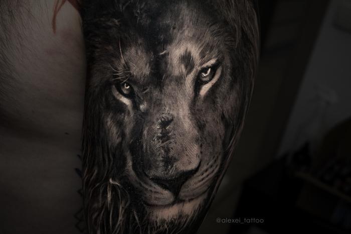 Лев тату