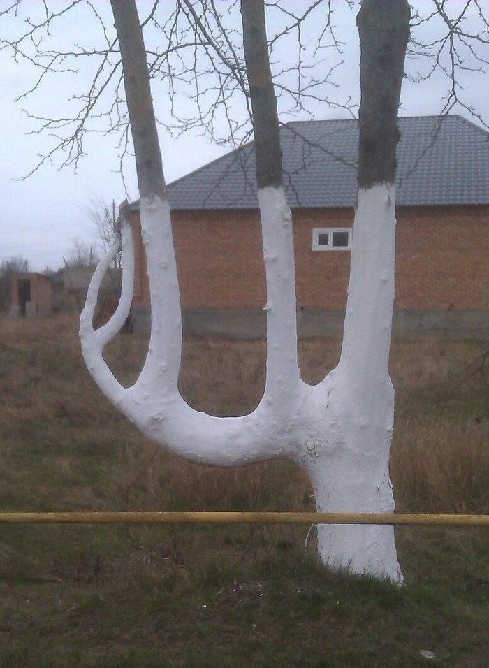 Довольно интересное дерево