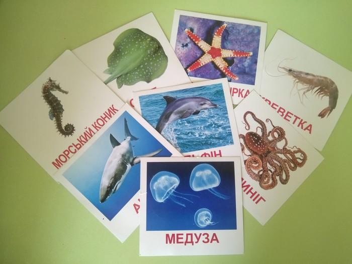 Будни дефектолога (5) Море, Сенсорный, Педагогика, Дефектолог, Игрушки, Длиннопост