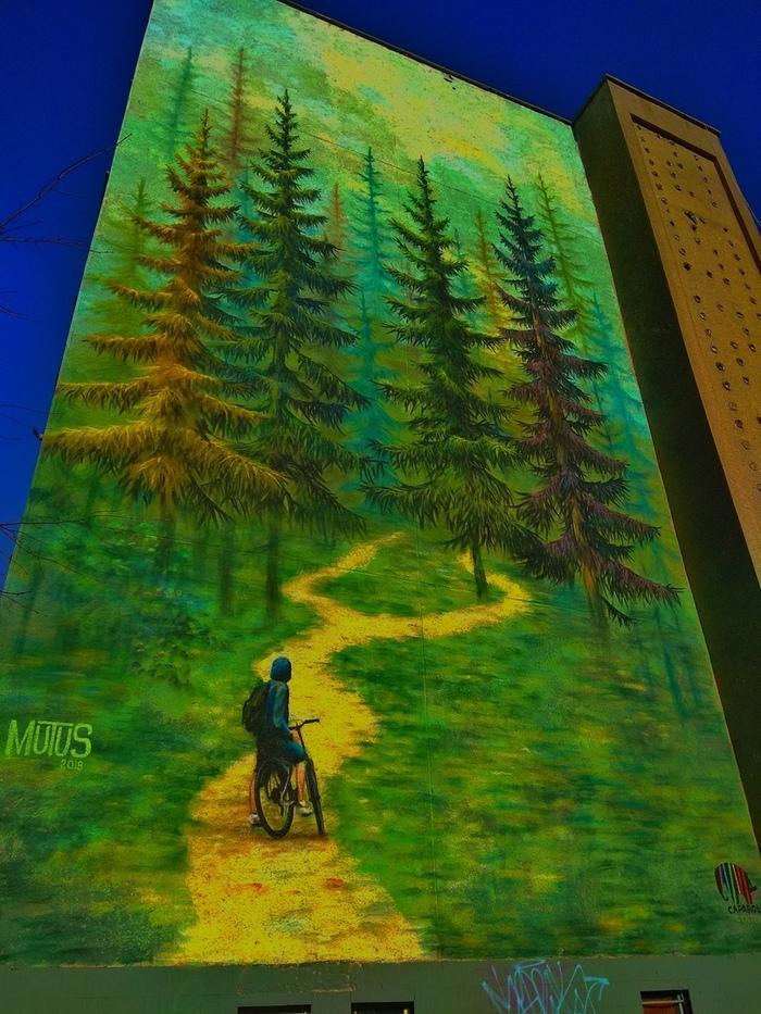 Граффити в Могилеве Граффити, Картина, Рисунок, Фотография, Лес, Дом