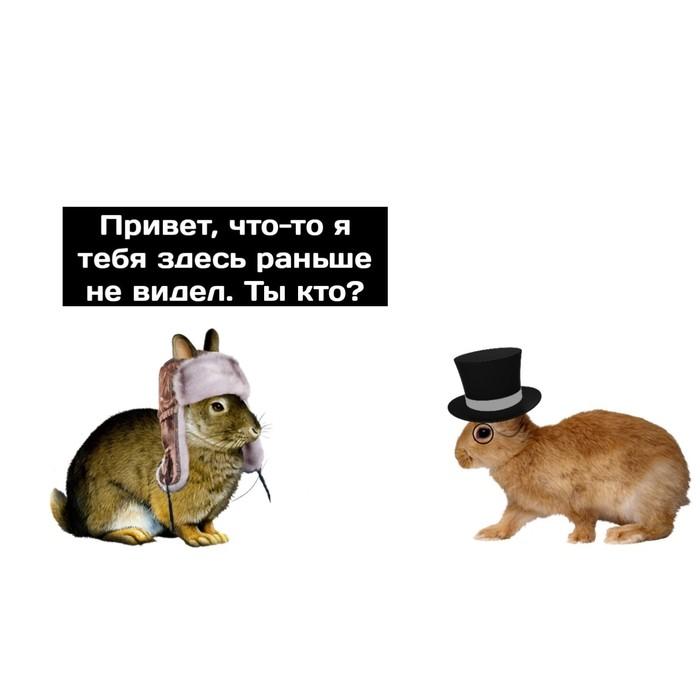 Адаптация Сингулярность, Комиксы, Водка, Россия, Англия, Длиннопост